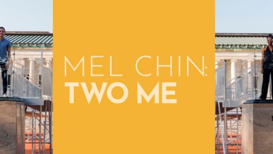 Mel Chin, Two Me, Toledo Museum of Art, contemporary, conceptual