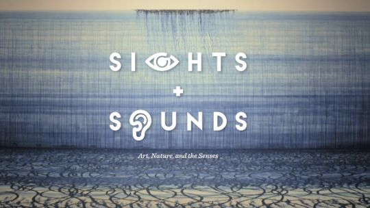 sights and sounds, exhibition, toledo museum of art, multisensory experience