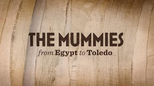 The Mummies Exhibition