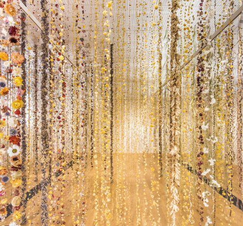 toledo museum of art, exhibition, flowers, rebecca louise law, community