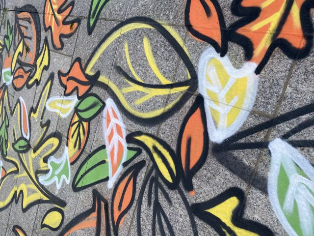 Large orange, yellow and green leaves with black and white outlines spray painted on a sidewalk.